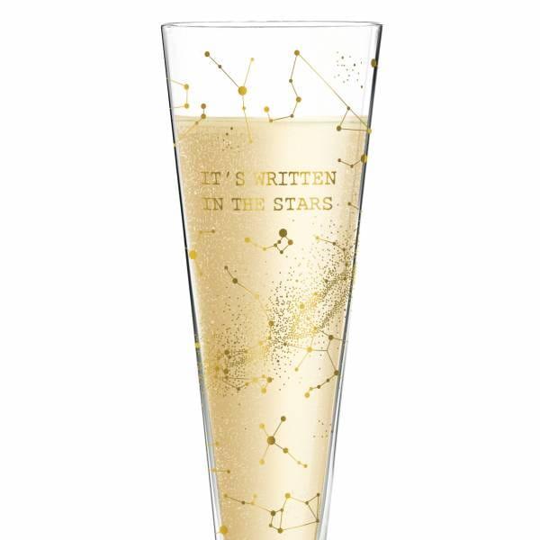 Champus Champagne Glass by Selli Coradazzi
